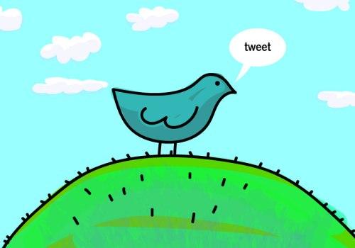 birdie-04-09-2016